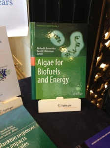 An up-and-coming use of seaweed is as biofuel.