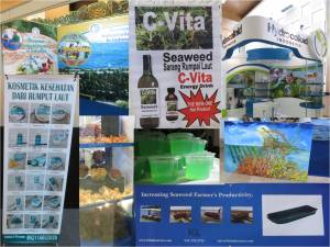 A phletora of products involving seaweed.