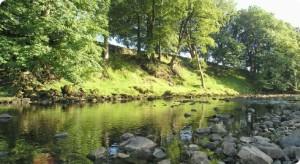 Photo from www.balticflows.ec